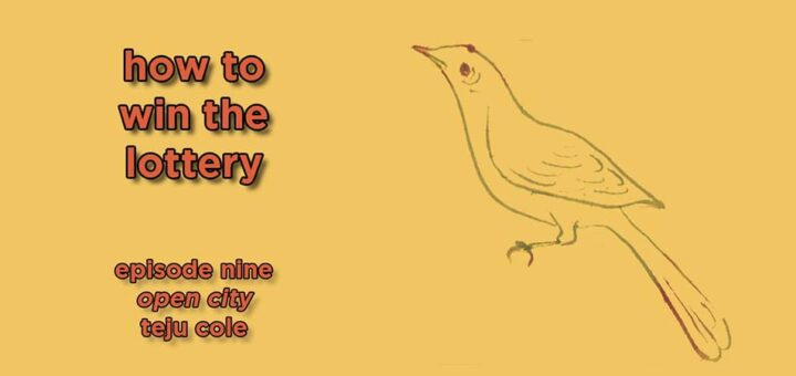 how to win the lottery #009 – open city by teju cole